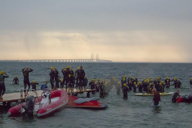 Start zum CPH Triathlon, im Hintergrund die Oeresundbruecke